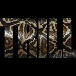 Trill - Snake Skin