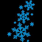 Snowflake Winter