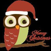 Santa Owl Merry Christmas