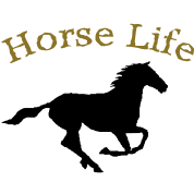 Horse Life with running horse