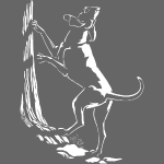 Hunting Dog Shirts Art Hound Dog Gifts