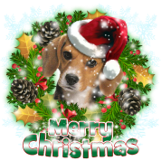Merry Christmas Beagle