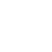 Numbers in decimals: Geometric Constant Pi