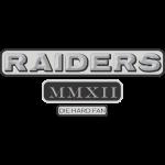 raiders_mmxii