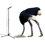 Bashful Ostrich on the Microphone