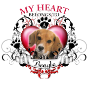 My Heart Belongs to a Beagle