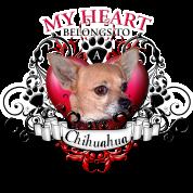 My Heart Belongs to a Chihuahua