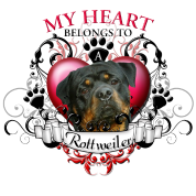 My Heart Belongs to a Rottweiler