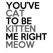 you've_cat_to_be_kitten_me_right_meow
