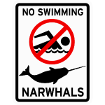 Narwhals - No Swimming