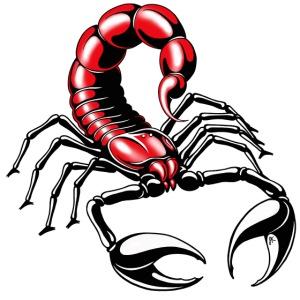 scorpion - red