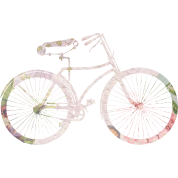Girly Floral Bicycle