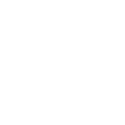 Double D's St. Paddy's Day
