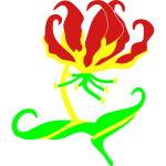 flame_lily3_t_11