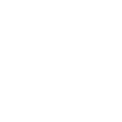 Save our Guns
