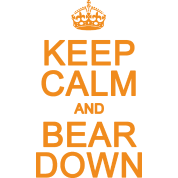Keep Calm and Bear Down Chicago Football