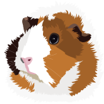 Retro Guinea Pig 'Elsie' (no text)