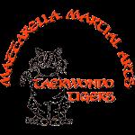 TKD Tigers