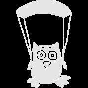 Owl paragliding