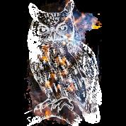 Galactic Owl
