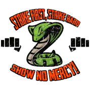 Strike First, No Mercy Cobra Kai