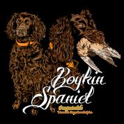 boykin_spaniel