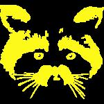 Raccoon Face Inverse