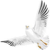 Bird - Dove - Peace