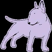 Bull Terrier cn_single_1c_4dark