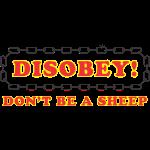 disobey_sheep