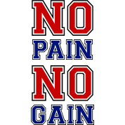 no pain no gain 3 essay
