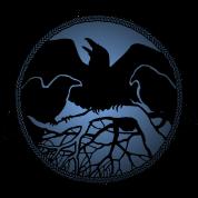 ravens art gifts native spirit animal crow shirts