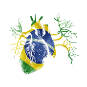 Brazil Flag in Real heart