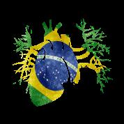 Brazil Flag in Real heart