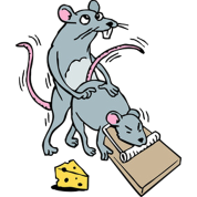 Mouse Screwing a Mouse in a Mousetrap Funny Joke