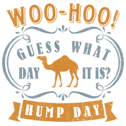 Hump day - Wednesday