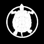 turtlewhite