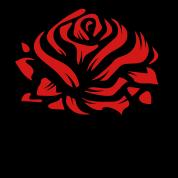 A Graffiti Rose