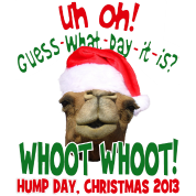 Hump Day Camel Santa Christmas 2013