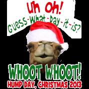 Hump Day Camel Santa Christmas 2013