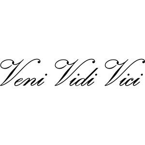 Zyzz Veni Vidi Vici Calli text