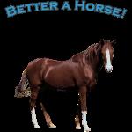 better_a_horse