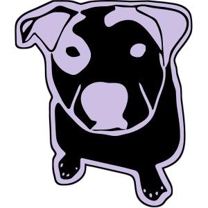 Pit Bull T-Bone