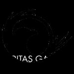 VG all-in-1 logo