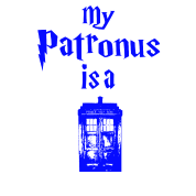 my patrons is a tardis