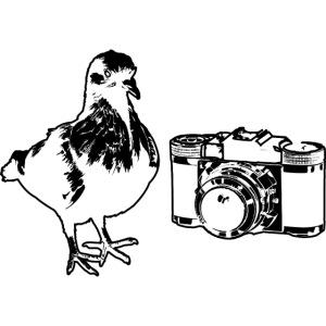 Pigeon Camera Black