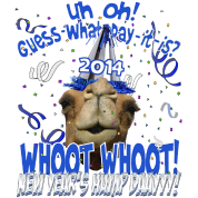New Years 2014 Hump Day Camel