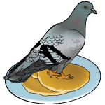 pigeon on a pancake