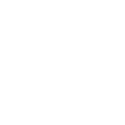 valentine's day tree heart love roots couple kiss