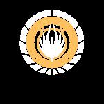 SKYF-01-050-battlestar galactica emblem